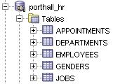 nextgen0b - HR Schema.jpg