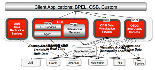 OSDI and ODI in a SOA Environment