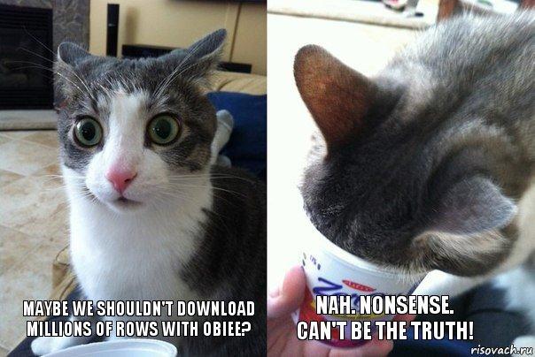 Cat Million Rows